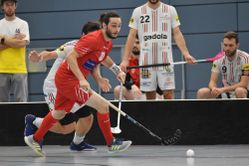 Red Lions KW41
