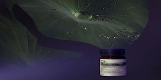 Sublime Replenishing Night Masque - 1